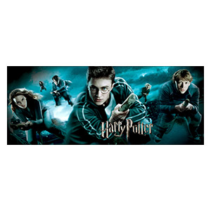 Harry Potter. Размер: 150 х 60 см
